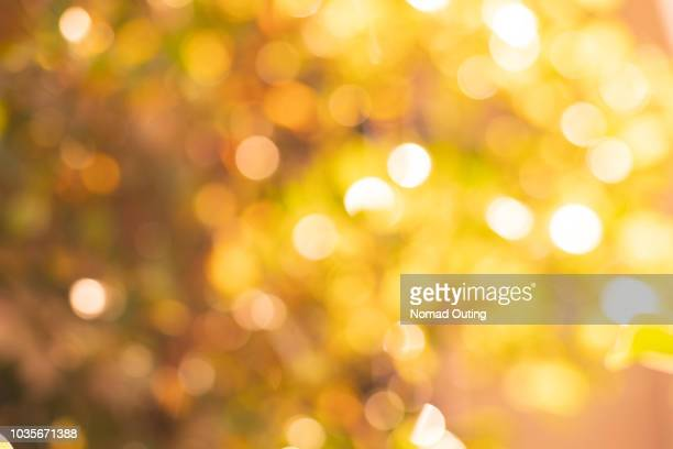 autumn season bokeh background.vibrant and vivid color nature. - team sport stock pictures, royalty-free photos & images