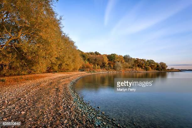 Autumn shoreline at Grafham Water, Cambridgeshire, East Anglia, UK