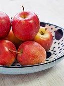 Autumn small apple of Korea