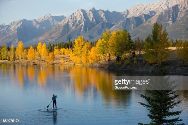 herbst stand up paddleboard abenteuer - provinz alberta stock-fotos und bilder