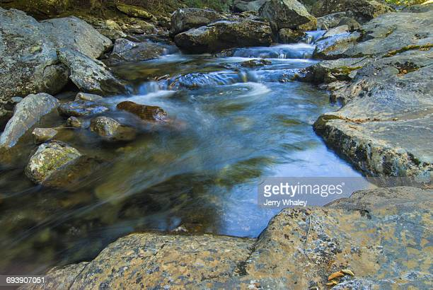 Autumn, Stream, Pisgah National Forest