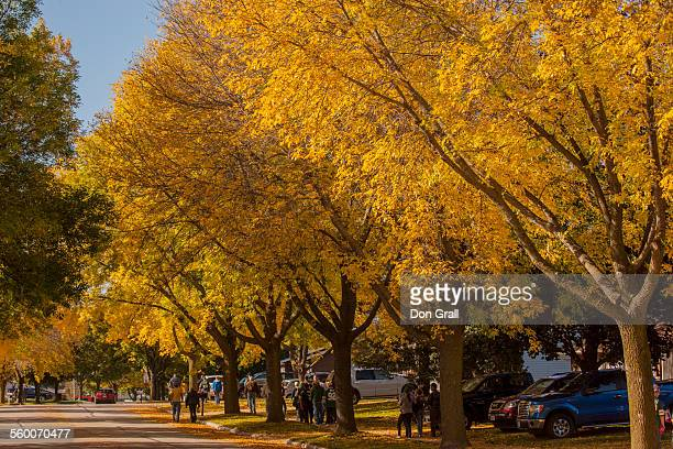 autumn street - green bay wisconsin - fotografias e filmes do acervo