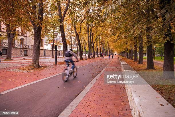 otoño street, vitoria-gasteiz - vitoria fotografías e imágenes de stock