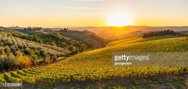 autumn sunset in the hills of tuscany - toscana foto e immagini stock