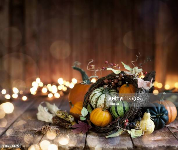 autumn thanksgiving cornucopia on a wood background - thanksgiving holiday stock pictures, royalty-free photos & images