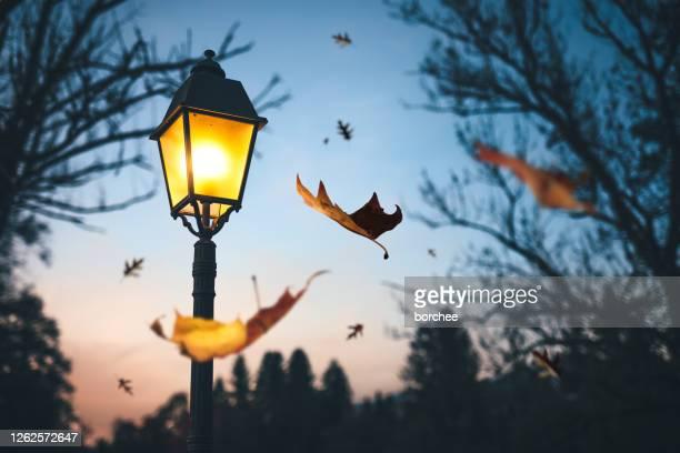 秋の時間 - 街灯 ストックフォトと画像