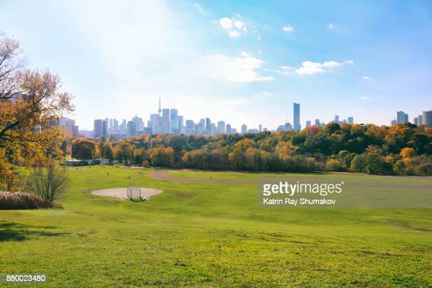 autumn toronto. riverdale park - parkland stock pictures, royalty-free photos & images