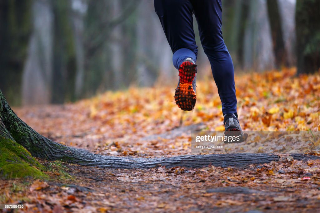 Autumn trail running background. : Stock Photo