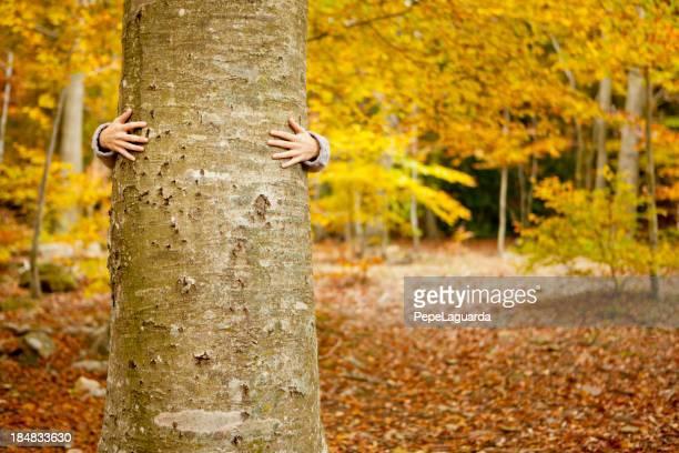 Autunno Abbracciare gli alberi