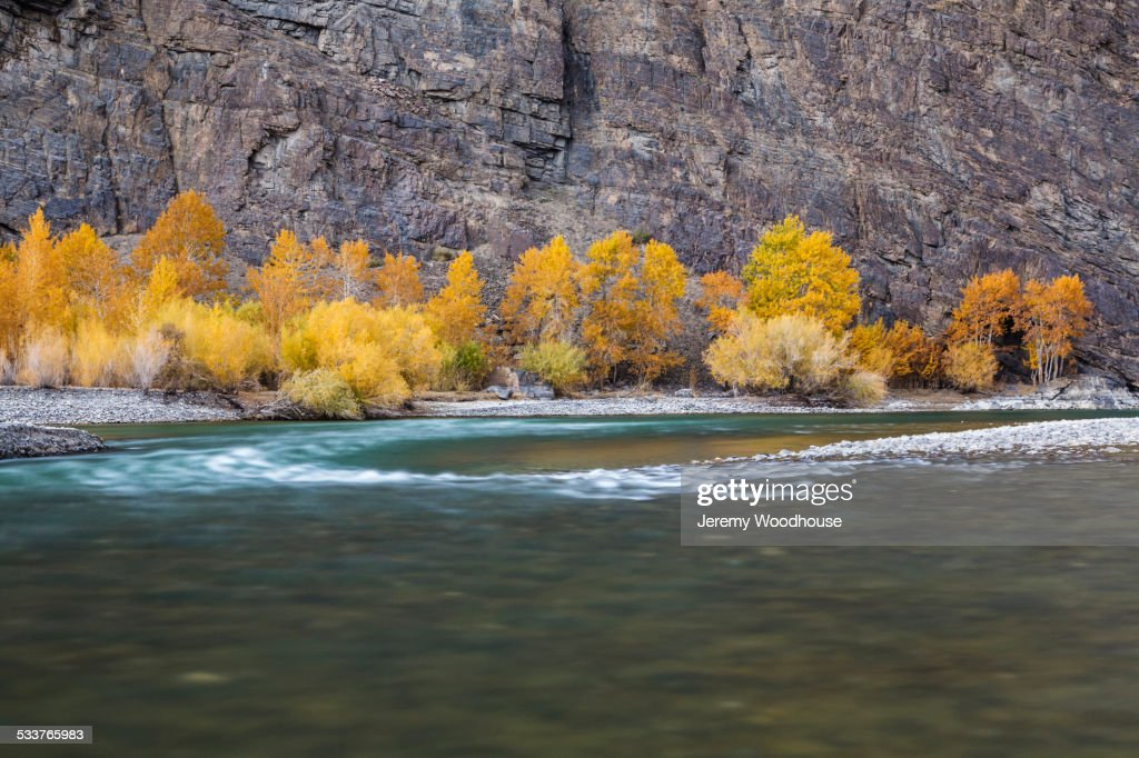 Autumn trees by cliff face and river : Foto stock