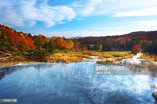 Autumn trees by lake in Akita