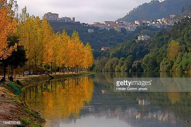 Autumn trees by portuguese river, Mondego