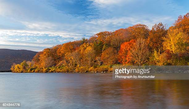 autumn trees in morning light - hudson river stock pictures, royalty-free photos & images