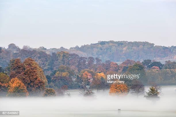 Autumn Trees in the Mist, Wimpole Estate, Arrington, Cambridgeshire, East Anglia, UK