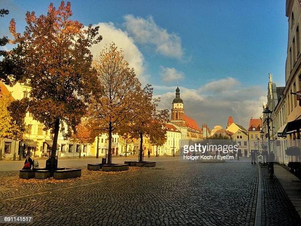 autumn trees on cobbled street in city against sky - cottbus stock pictures, royalty-free photos & images