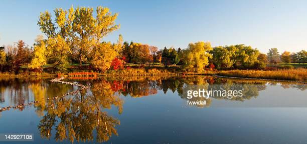 Autumn trees reflection in Columbia Lake