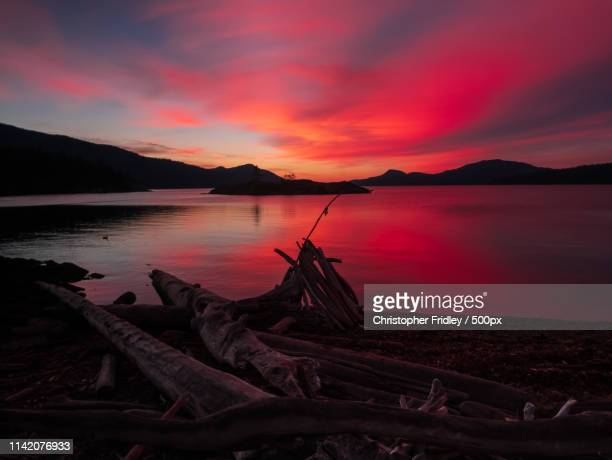 autumn twilight - nature stock pictures, royalty-free photos & images