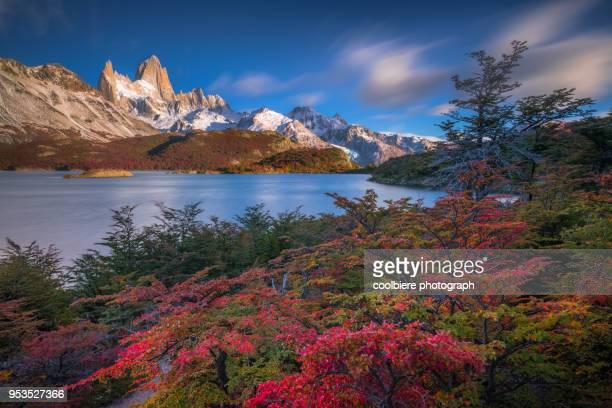 autumn view at lake capri with mount fitzroy background - patagonische anden stock-fotos und bilder
