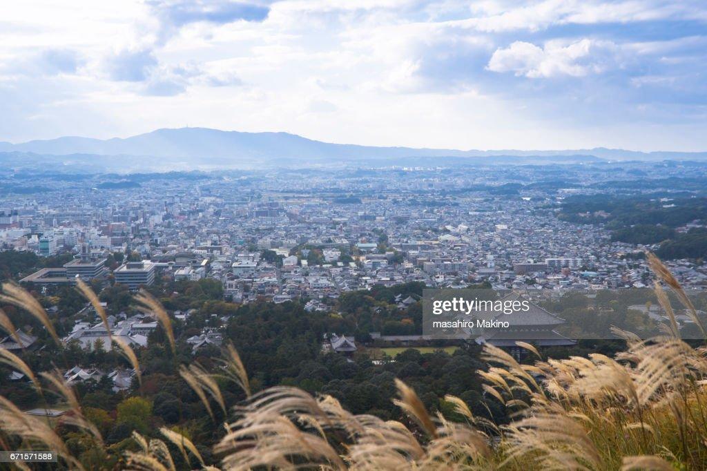 Autumn View of Nara City : Stock Photo