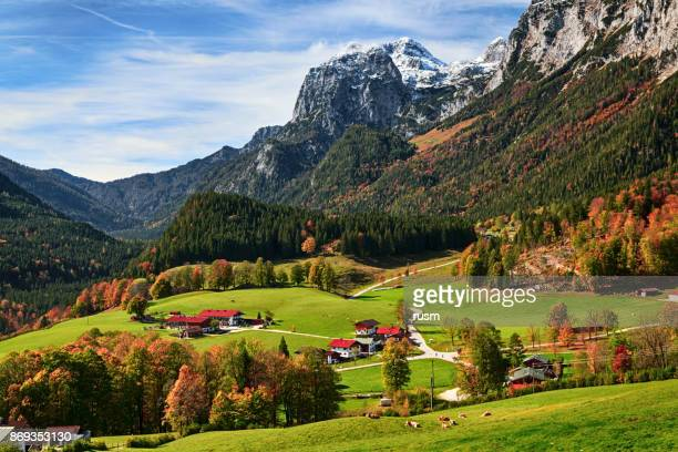 autumn view of ramsau bei berchtesgaden, bavarian alps, germany - berchtesgaden alps stock photos and pictures