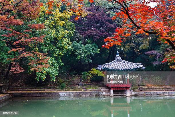 Autumn view of Secret Garden