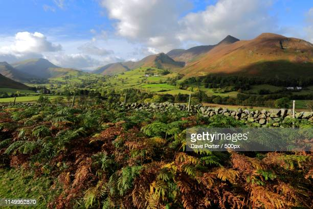 autumn view through the newlands valley, allerdale, lake distric - lake district autumn stock pictures, royalty-free photos & images