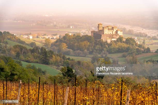 autumn vineyards and torrechiara castle, langhirano, parma - emilia romagna, italy - reggio emilia stock pictures, royalty-free photos & images