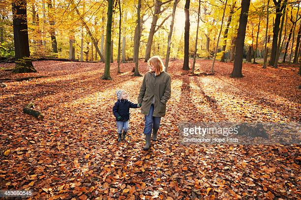 autumn walk - autumn stock pictures, royalty-free photos & images