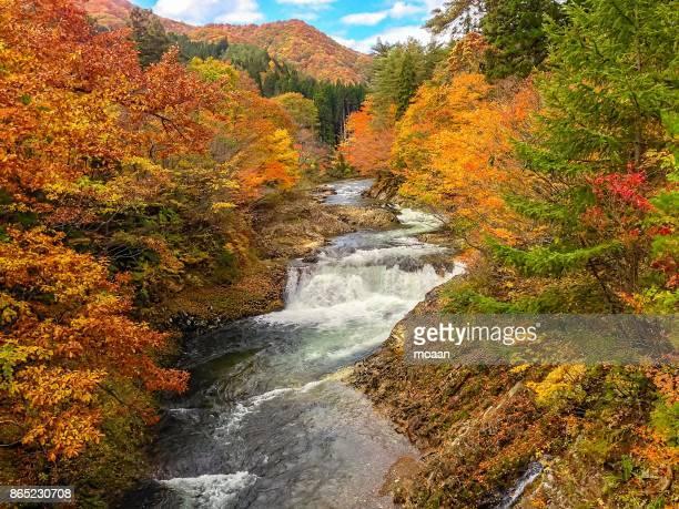 Autumn Wateralls