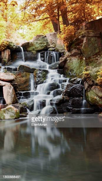 herfst waterfal - virginia water surrey stockfoto's en -beelden