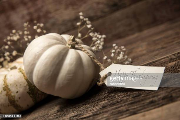 autumn white small pumpkins with card on wood background - happy thanksgiving card stock pictures, royalty-free photos & images