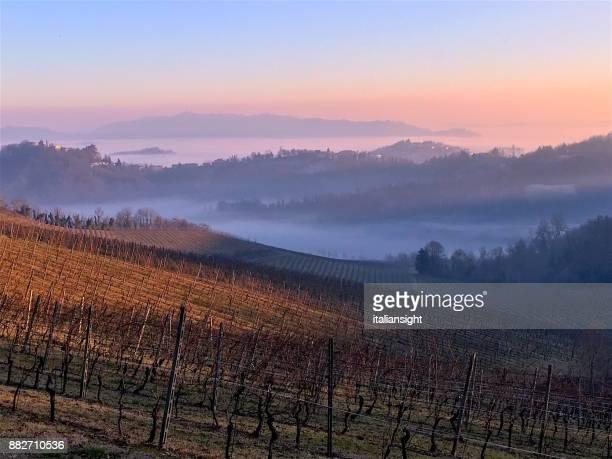 Höst vinter Panorama vingård med Fog att höja från Dalarna. Monferrato, Piemonte, Italien