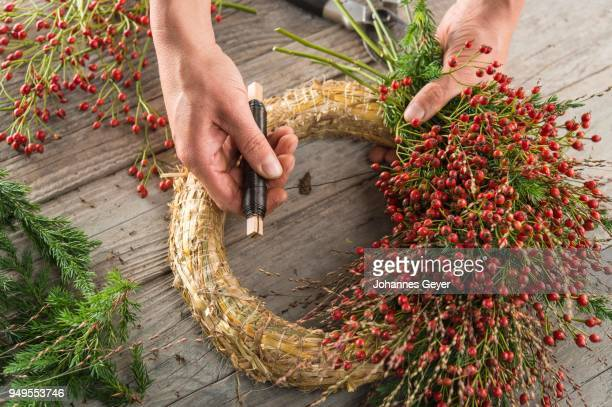 Autumn wreath on wood panel is bounded by hands with binding tool, based on straw wreath, juniper (Juniperus), rose hip (Rosa canina), grasses (Panicum virgatum)