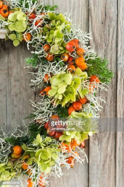 Autumn wreath on wooden wall cutout, tied with rosehip (Rosa canina), Heather (Calluna vulgaris), hydrangea (Hydrangea macrophylla), juniper (Juniperus communis), Cushion Bush (Calocephalus brownii)