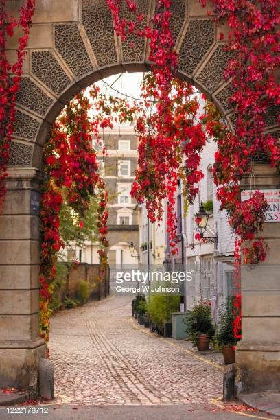 autumnal archway - arch stock pictures, royalty-free photos & images
