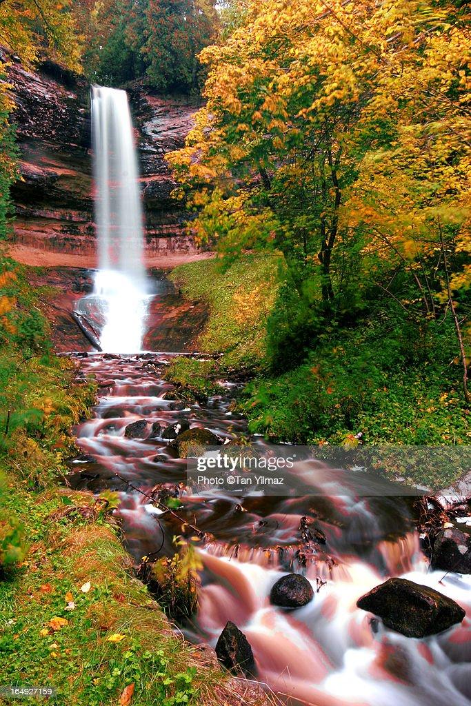 Autumnal Chute : ストックフォト