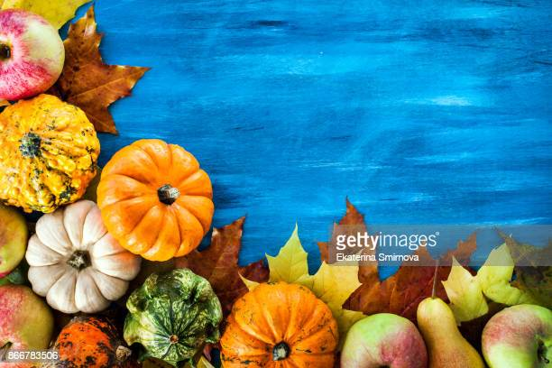 autumnal colorful pumpkins, apples and fallen leaves  on blue background - happy thanksgiving card stock pictures, royalty-free photos & images