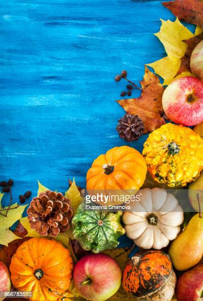 Autumnal colorful pumpkins, apples and fallen leaves  on blue background