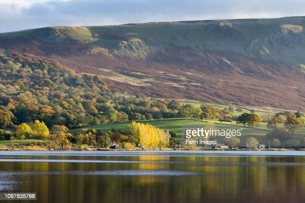 Autumnal evening sunlight on Ullswater English Lake District Cumbria