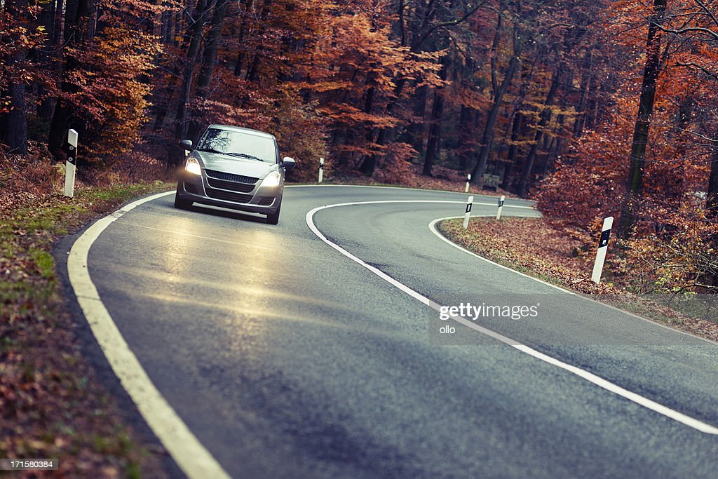 Autumnal forest road at dusk : Stock Photo