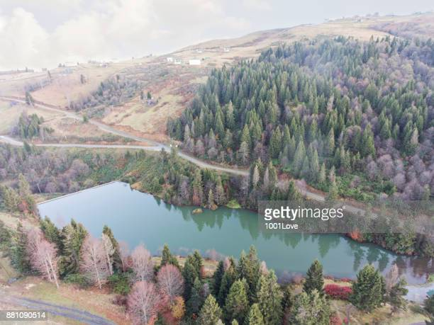 autumnal forests with lake. - trabzon stock photos and pictures