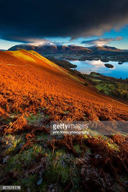 Autumnal Lakeland. Lake District National park. UK. Europe.
