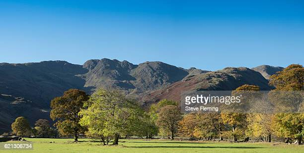 autumnal langdale valley, cumbria, uk. - ambleside stock photos and pictures