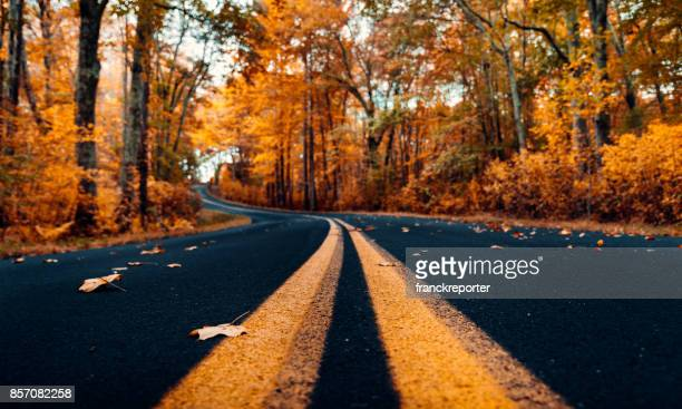 autumnal road in new hampshire - october stock pictures, royalty-free photos & images