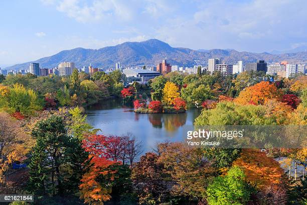 autumnal scene of nakajima park, sapporo, hokkaido, japan - sapporo - fotografias e filmes do acervo