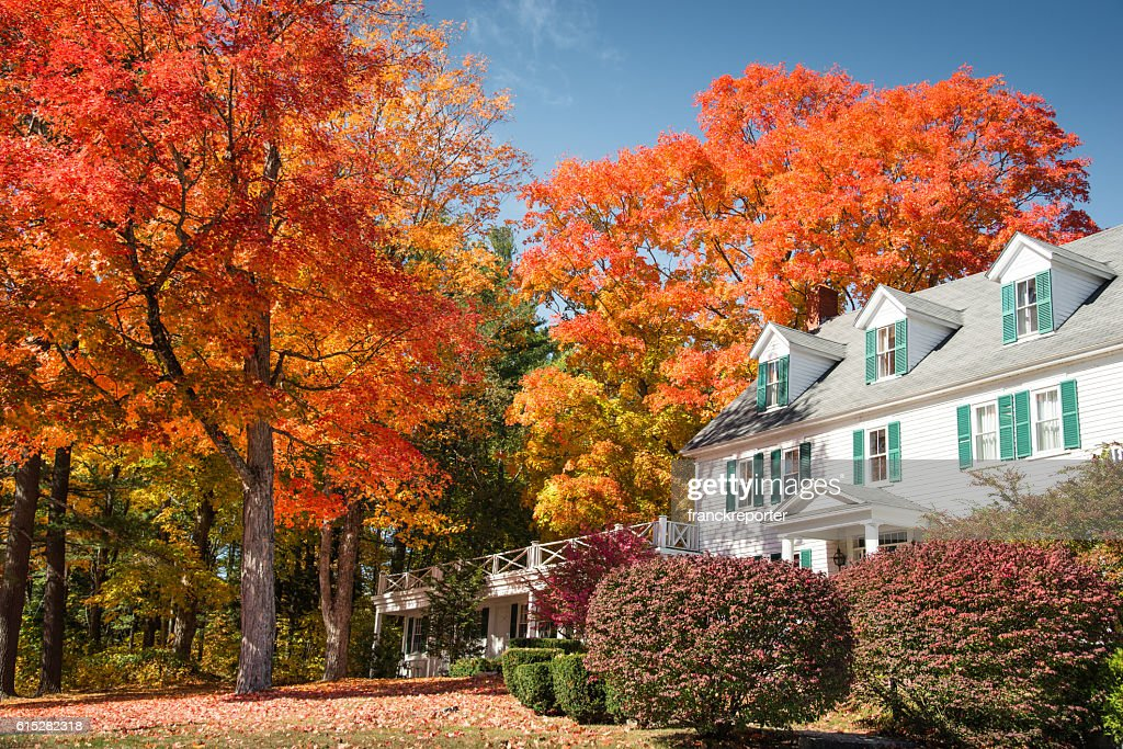 autumnal tree and residence in Vermont : Stock Photo