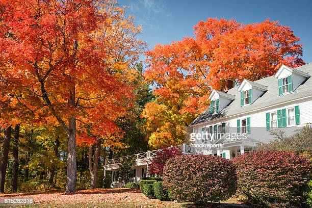 autumnal tree and residence in vermont - autumn falls stock pictures, royalty-free photos & images