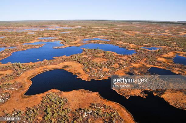 Autumn,forest-tundra.