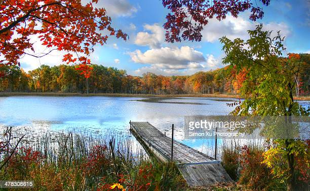 autumn's lasting impressions - clarkston michigan stock pictures, royalty-free photos & images