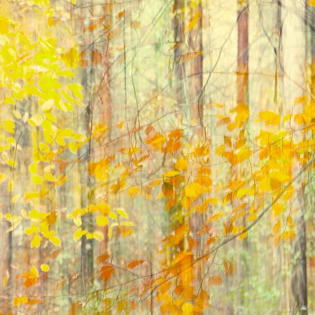 autumns pastel...